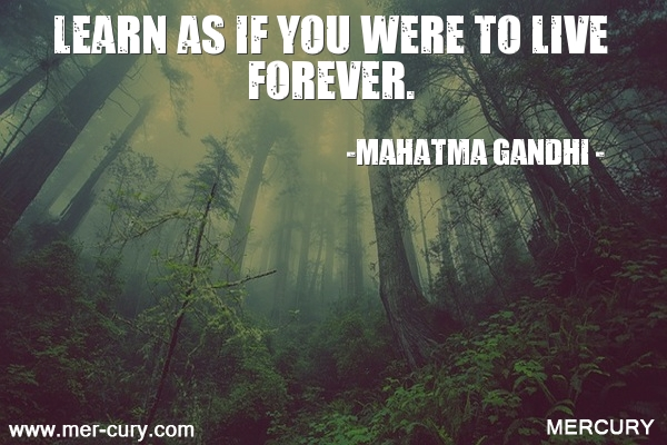 1.learn-as-if-you-were-to-live-forever