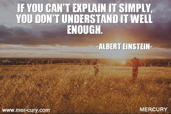 13.if-you-cant-explain-it-simply-you-dont-unde