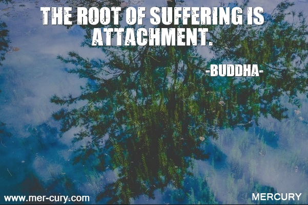 17.the-root-of-suffering-is-attachment