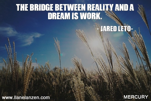 39.the-bridge-between-reality-and-a-dream-is-work