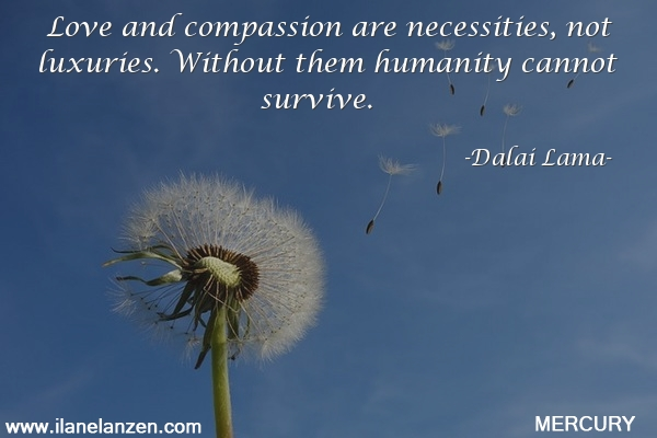 50.love-and-compassion-are-necessities-not-luxuries