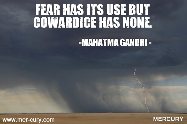 7.fear-has-its-use-but-cowardice-has-none