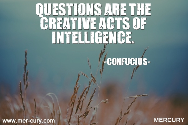 16.questions-are-the-creative-acts-of-intelligence