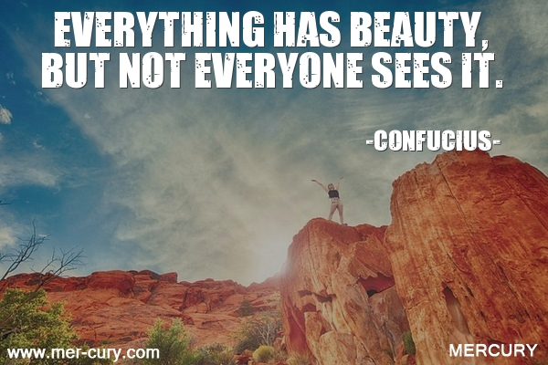 19.everything-has-beauty-but-not-everyone-sees-it